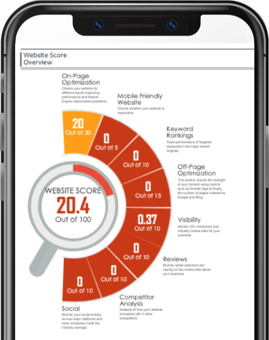 Website Audit Score Overview